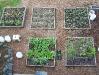 Organic Plots
