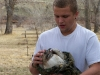 Will Red Tail Hawk rescue